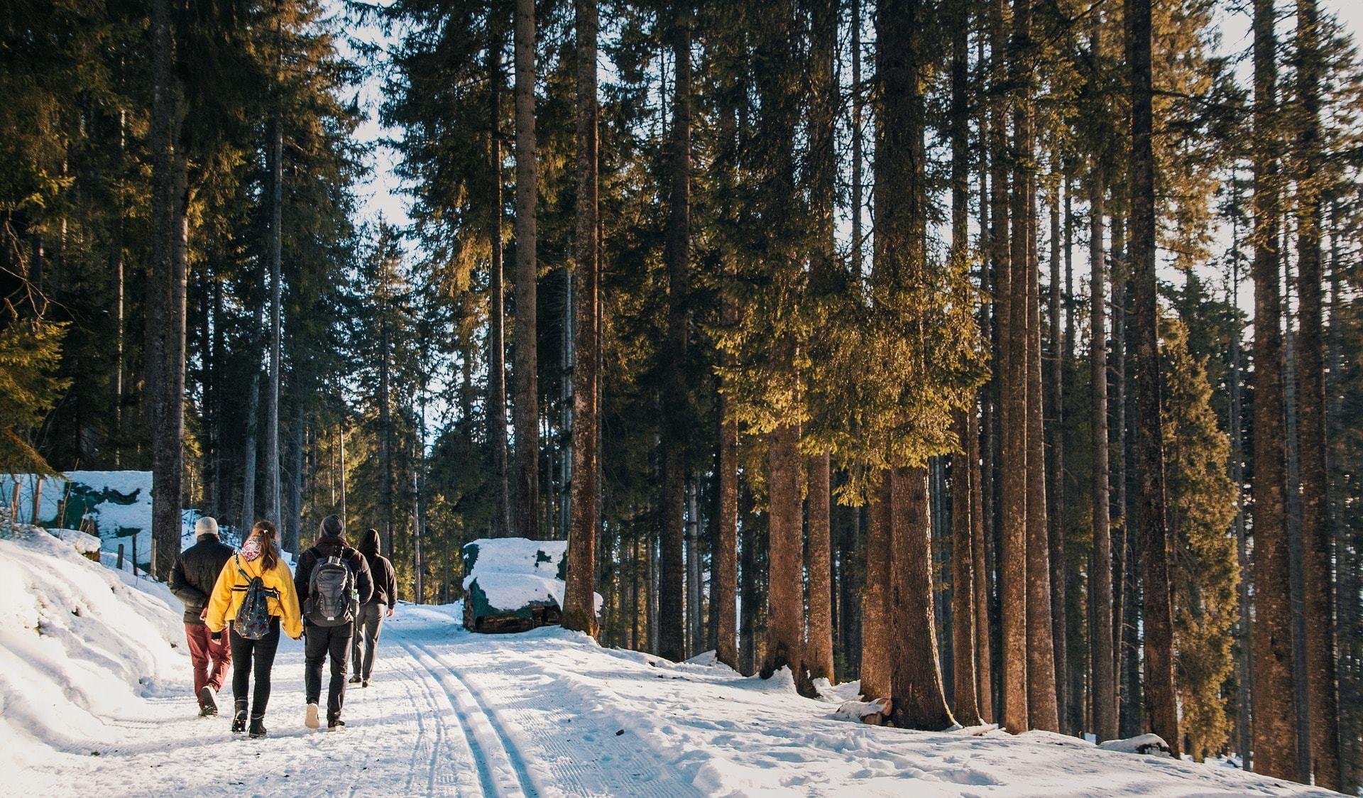 travel switzerland by hiiking