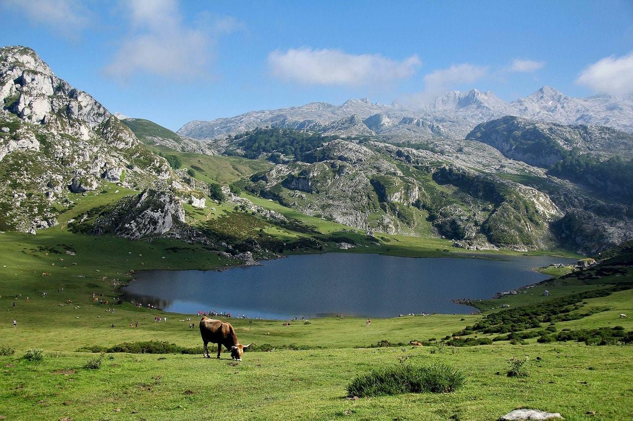 Picos de Europe, Spain Travelers Wifi